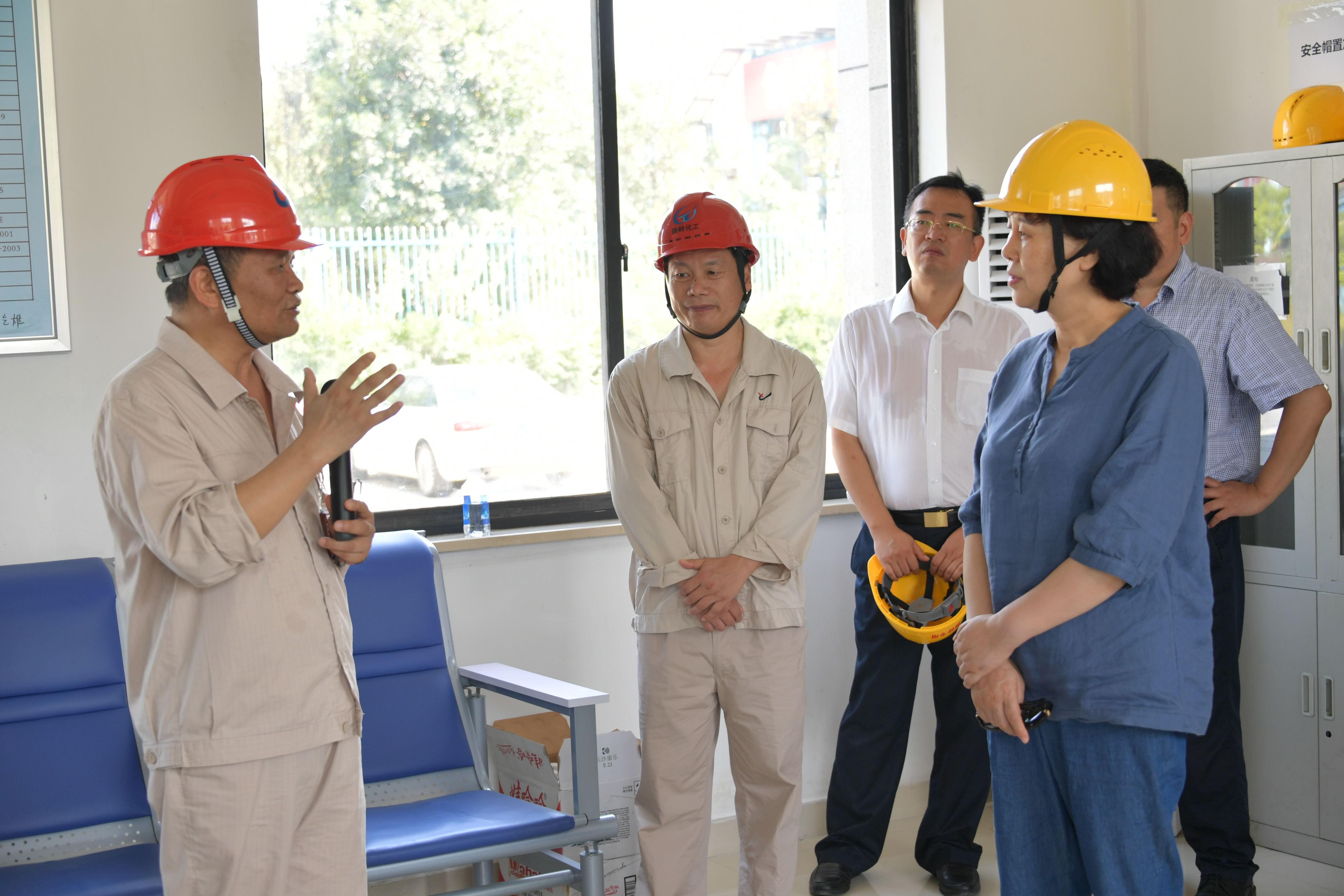 湖南省委常委、省委统战部部长黄兰香莅临新岭化工调研指导工作